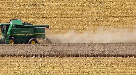 Die europäische Agrarpolitik hat Rückwirkung auf die Welternährung