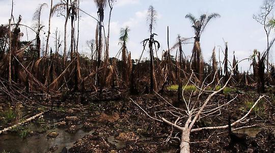 Im Nigerdelta 2010: Treibstoff am falschen Fleck <br/>Foto von Sosialistisk Ungdom