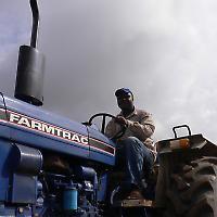 Landwirtschaft in Ghana