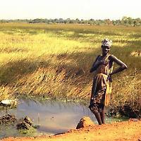 Senegal <br/>Foto von gbaku
